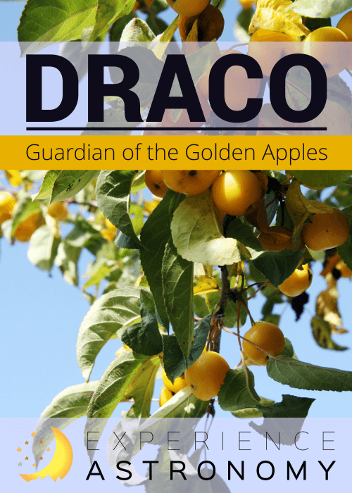Draco-GuardianOfTheGoldenApples