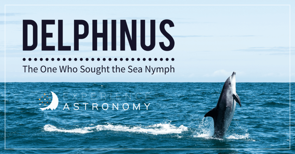 Delphinus: The One Who Sought the Sea Nymph