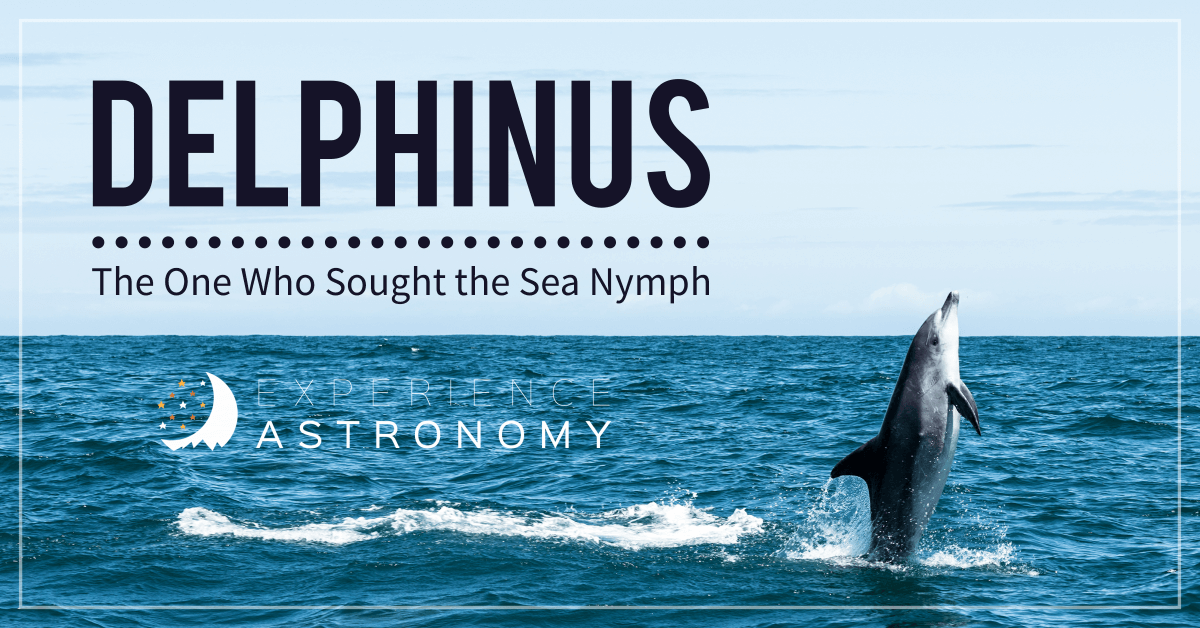 Delphinus - the One Who Sought the Sea Nymph