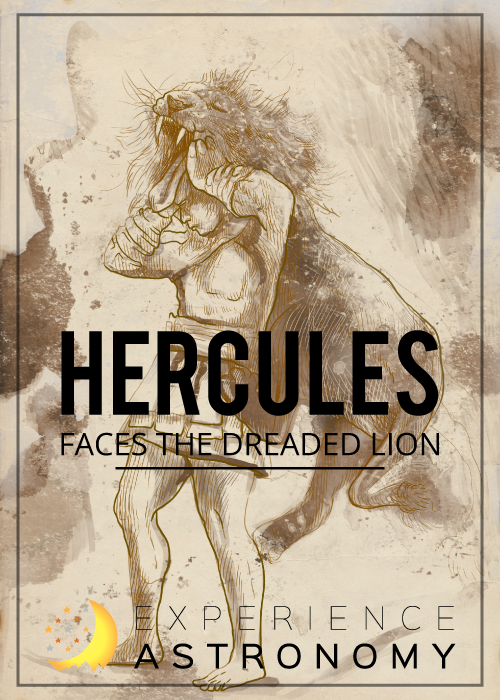 Hercules and the Lion
