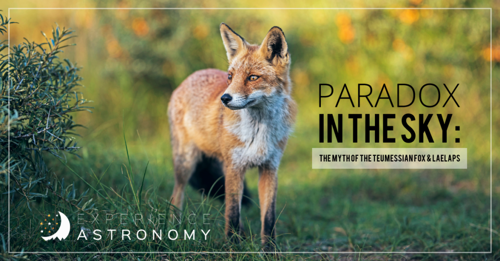 Paradox in the Sky: The Myth of the Teumessian Fox and Laelaps